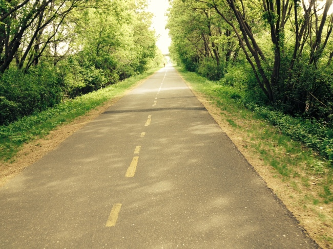 Cedar Lake bike trail
