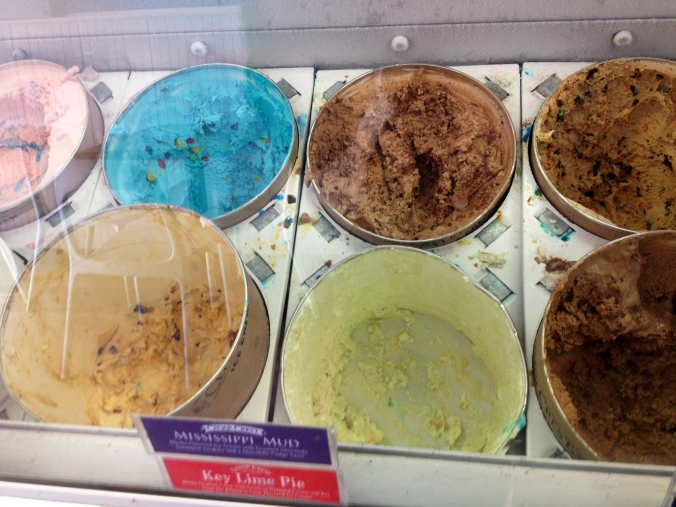 sample of ice cream flavors at Edina ice cream parlor
